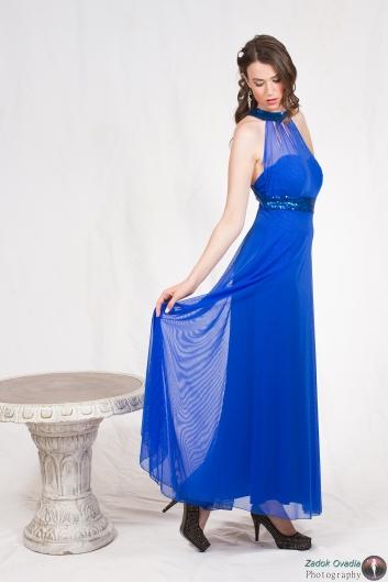 <h5>שמלת קולר שיפון</h5>